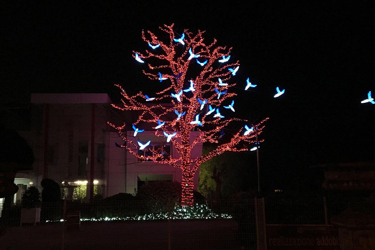 Pellegrini Artisti Degli Alberi Di Natale Più Belli A Civitanova Marche