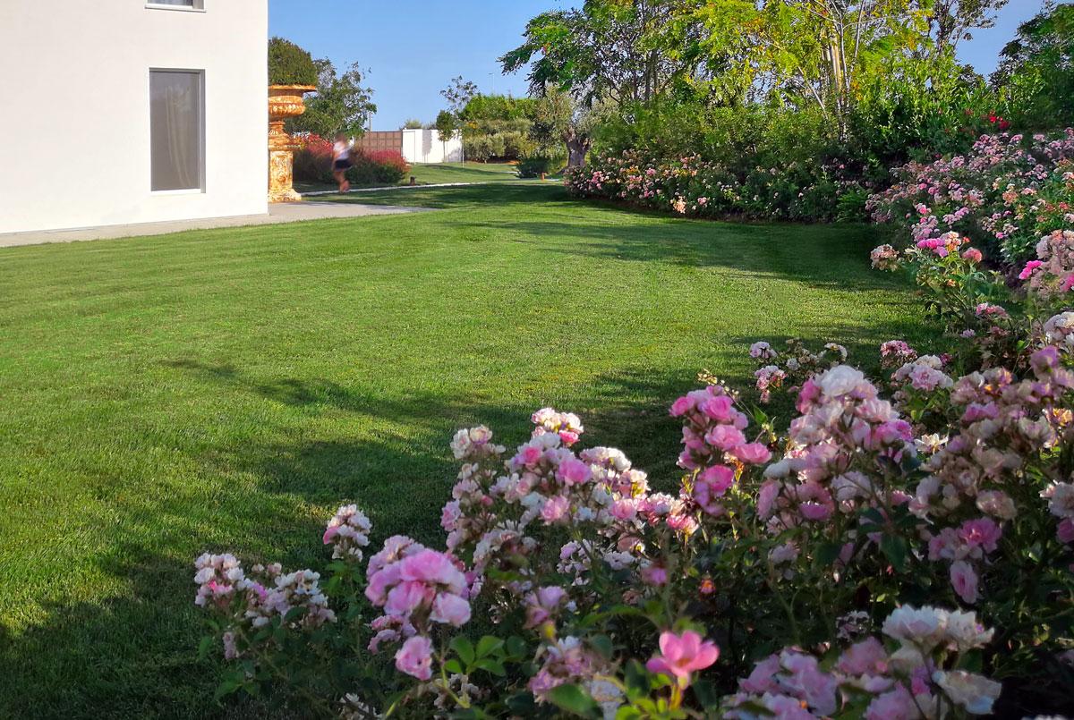 Progettare Un Giardino In Campagna villa e giardino ispirati al salento ~ pellegrini giardini