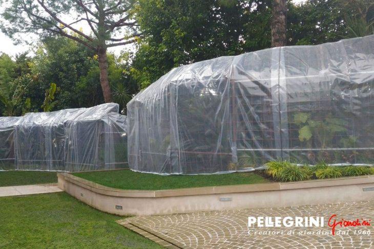 Giardino esotico protetto dal freddo